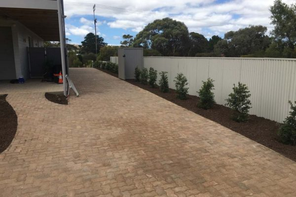 Paved driveway with hedges along side - Adelaide Landscaping - TGLandscapes